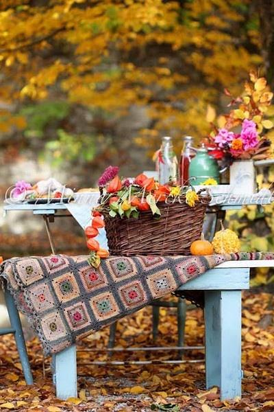 fall toamna autumn (5)