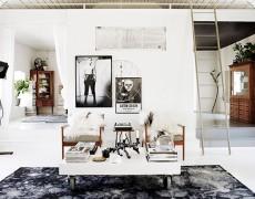 casa alb negru suedia  (7)