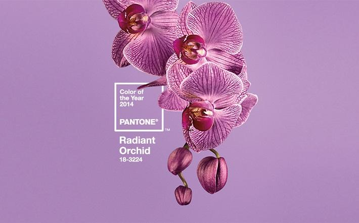 Pantone 2014 (3)