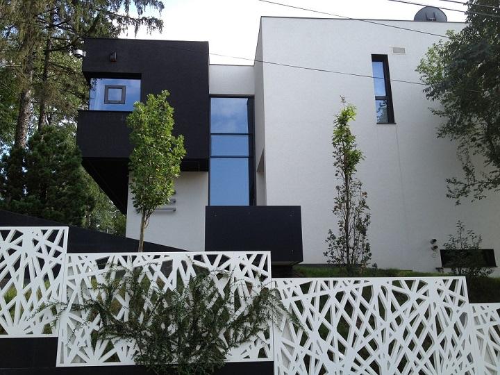 Targu Mures 2013 (36)