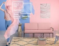 Interioare trend culori Pantone 2016 (150)