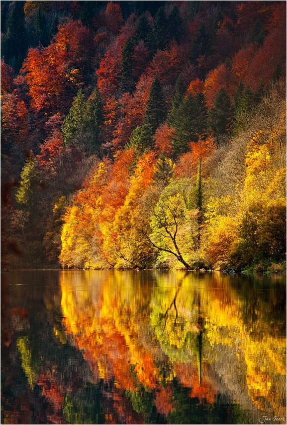autumn2016-14