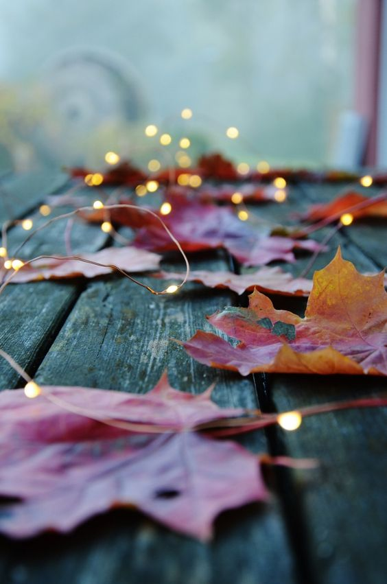 autumn2016-18